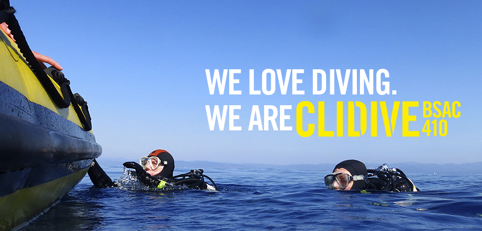 WE LOVE DIVING