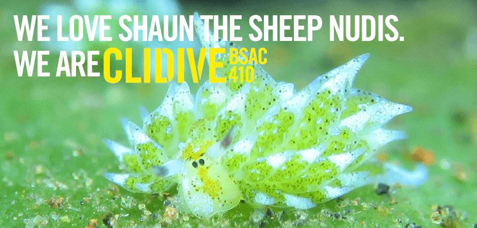 WE LOVE SHAUN THE SHEEP NUDIS