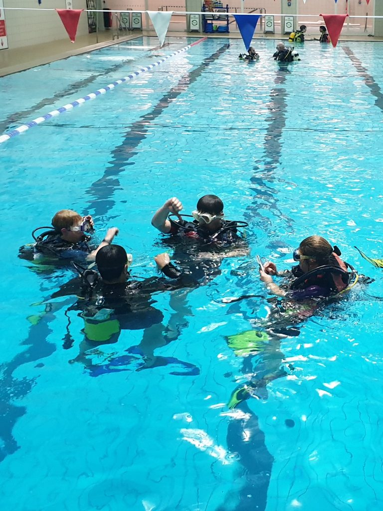 Ocean Diver Training